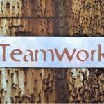 Essential Qualities of Great Team Members